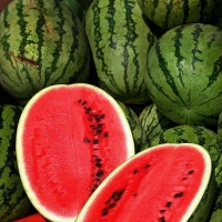 All_Sweet_Watermelon_Seeds